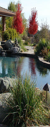 Beautiful Welcome To Living Water Landscape U0026 Design